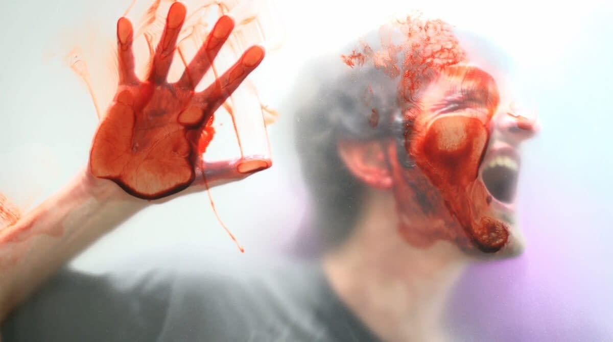 Face and Hand - Gore